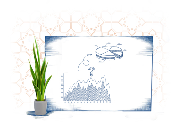 Developing a Financial Plan